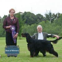 "Best Of Winners/WB: Lochiel Irresistible Sassenach – ""Al"""