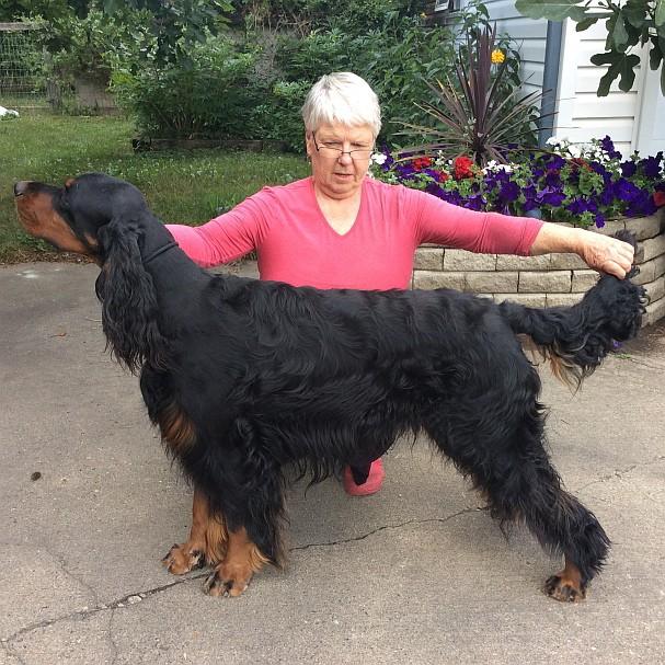 "Winners Dog: Lochiel Sassenach Jake -""Jake """